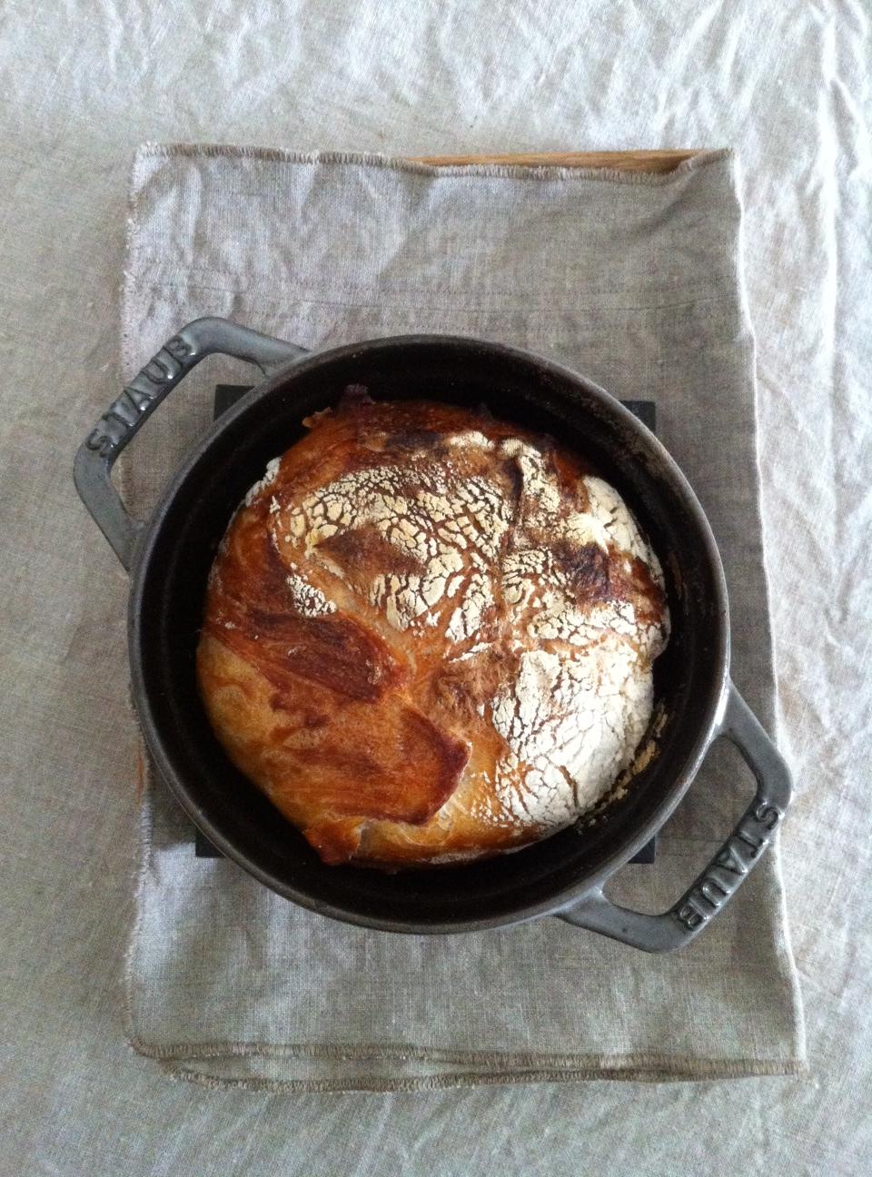 ストウブで捏ねないパンを作ろう!