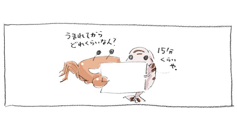 0004_5