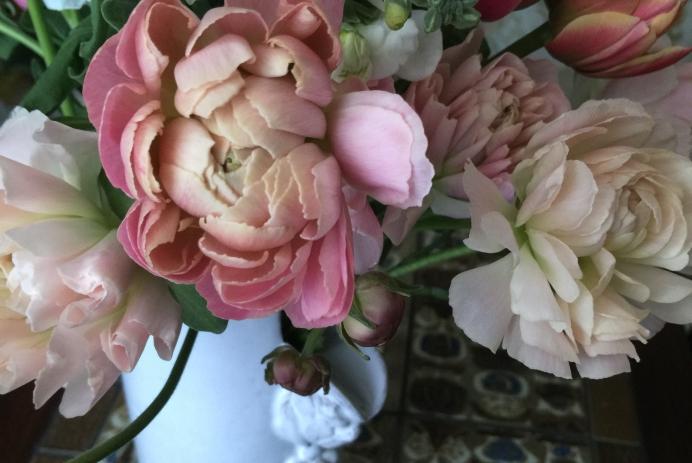 ラナンキュラスと春の花、Photo by Yoko Kadokawa