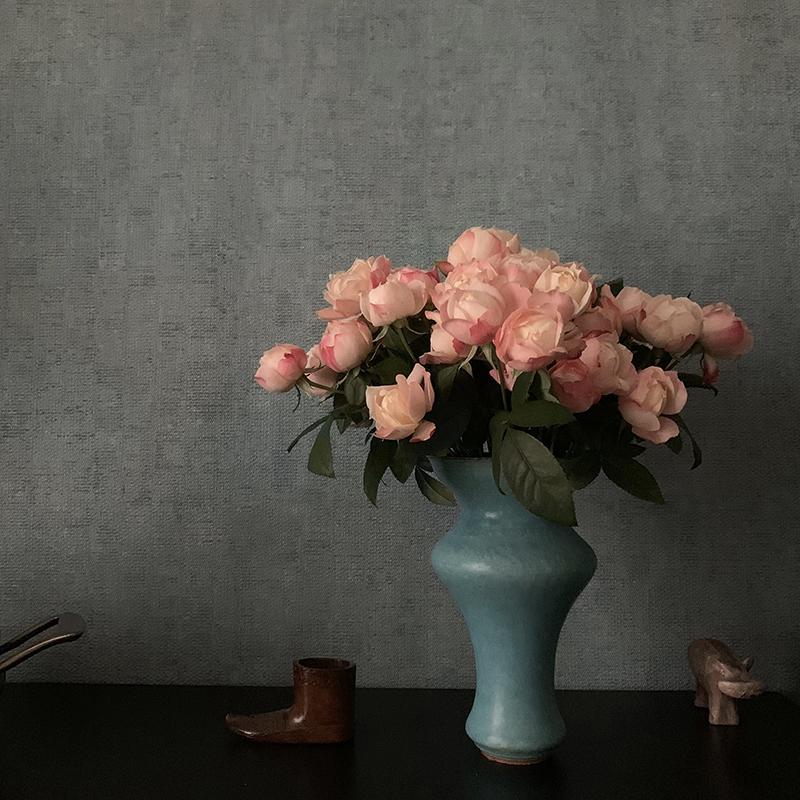 薔薇「シャンスポム」 Photo by Yoko Kadokawa
